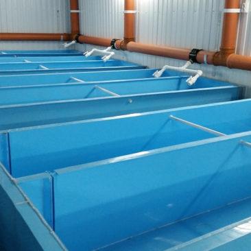 Полипропиленовые емкости для разведения рыбы